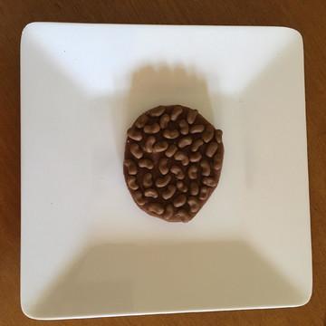 Feijão carioquinha para educação alimentar