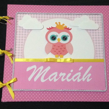 Álbum personalizado para o bebê menino (azul) menina (rosa)