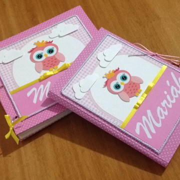 Álbum personalizado para o bebê e capa para caderneta de vac