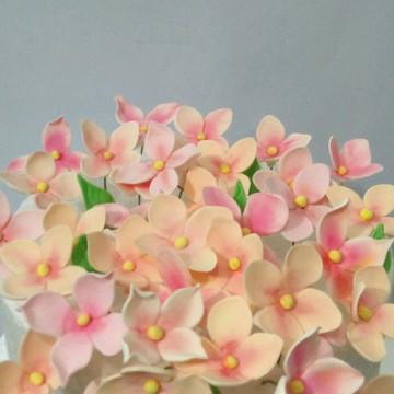 Hortência rosa