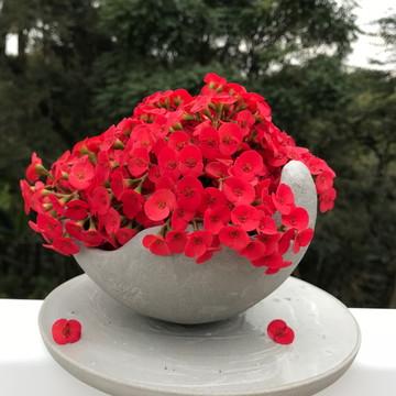 Vaso decorativo em concreto