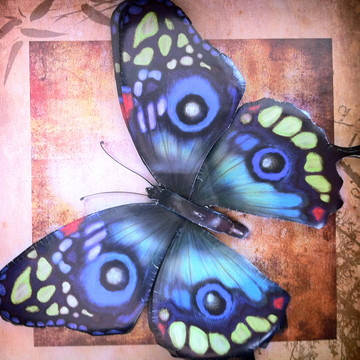 Quadro borboleta azul arte francesa
