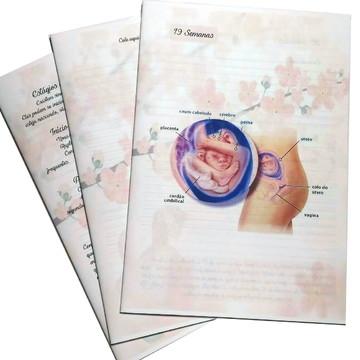 Miolo impresso Diario de Gravida - AI055 90gr