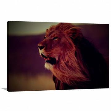 Quadro de Leão Rei da Selva decorativo