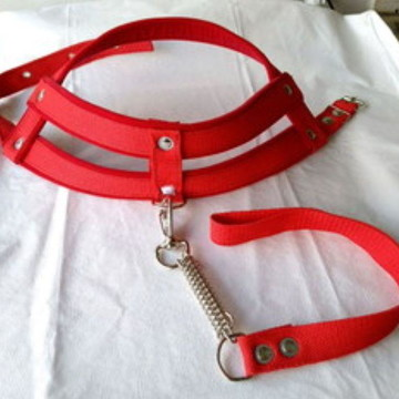 Kit 5 peças Peitoral Para Cães
