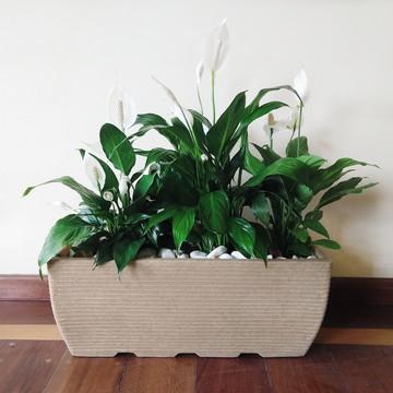 1 Vaso Jardineira 60x25 Horta Polietileno Plastico