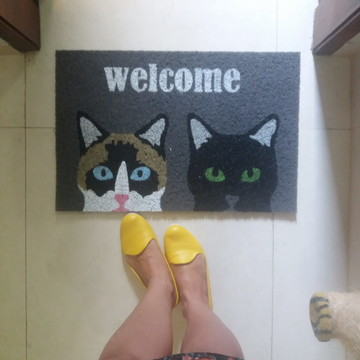 Gatos: Siamês e Preto