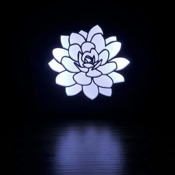 Luminária Abajur Lanterna de SUCULENTA