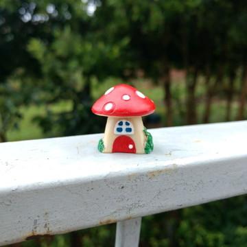 Cogumelo casinha médio