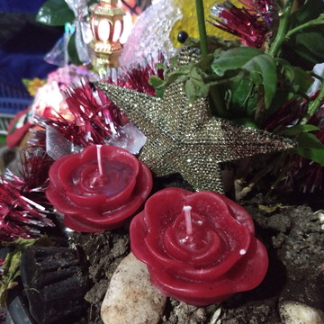 Rosas flutuantes