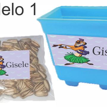 kit vaso e semente-timão