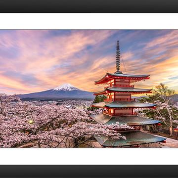Quadro Japao Castelo Flor Cerejeira Asia Monte Fuji Natureza