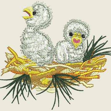 Matriz-Pássaros