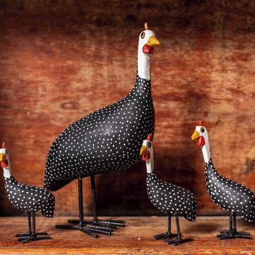 Kit galinhas d'angola