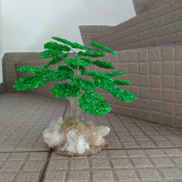 Bonsai Pedra Verde