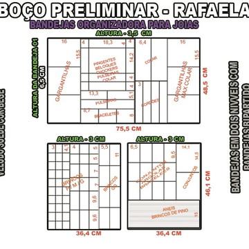 projeto rafaella f ,organizador