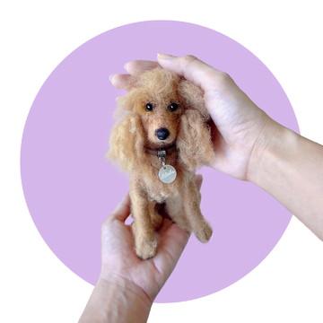 Cocker Spaniel Inglês - Miniatura de cachorro