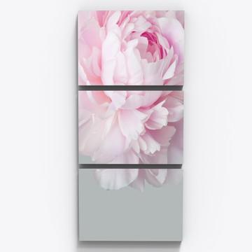 Conjunto 3 Quadros Flor Rosa Botanico Sala Quarto Tri010