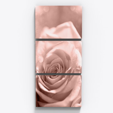 Conjunto 3 Quadros Rosa Flor Botanico Sala Copa Tri011