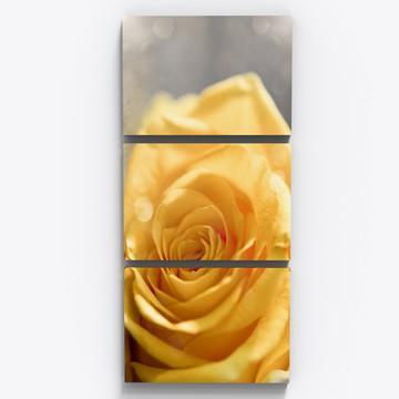 Conjunto 3 Quadros Rosa Amarela Botanico Sala Copa Tri014