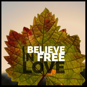 Quadro free love
