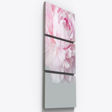 Quadros Decorativos Rosa Botanico Petalas Copa Sala Tri010