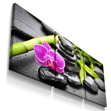 Quadros Decorativos Botânico Pedra Preta Flor Sala Tri057