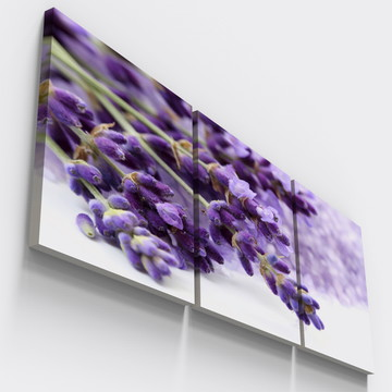 Quadros Decorativos Lavanda Floral Alfazema Varanda Tri106