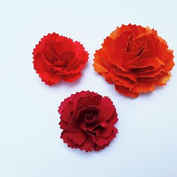 Gabarito de Flores Regiane Boppré nº 09