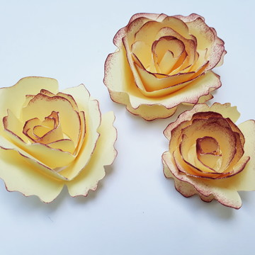Gabarito de Flores Regiane Boppré nº 29