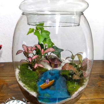 Mini Terrario fechado,mini jardim no vidro