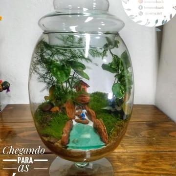 Mini Terrario fechado,mini jardim no vidro.