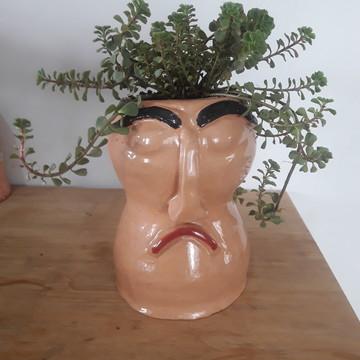 Vaso suculenta_ Cabeludo