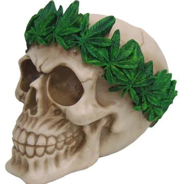 Crãnio Cannabis fito em Resina