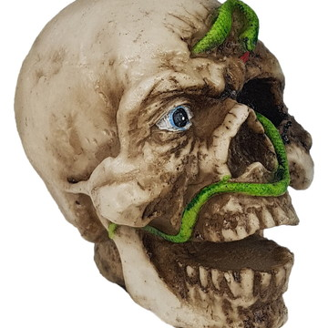 Crânio Cobra feito em Resina