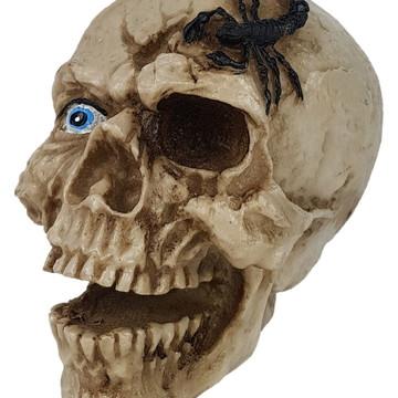 Crânio Escorpião feito em Resina