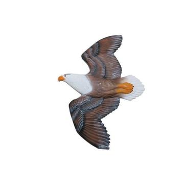 águia Falcão de Parede
