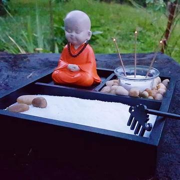 Jardim Zen Meditação