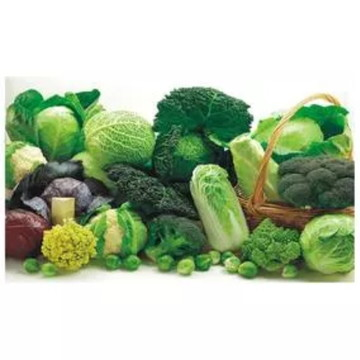 Verduras Legumes Lanchonete Adesivo Comercio Para Comida