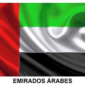 Bandeira Adesiva dos Emirados Árabes 7,5 X 10 cm