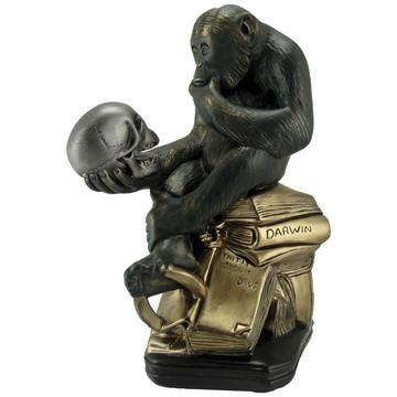 Macaco cm crânio - Símbolo da Mutação