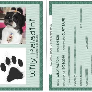 RG Animal Identificação Animal para Cachorro Gato seu pet