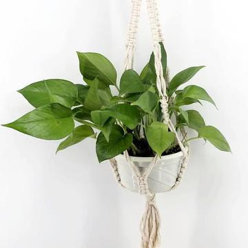 Eclectic Plant hanger macramê
