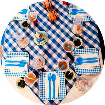 Toalha de Piquenique Azul /// Xadrez Largo /// Oxford