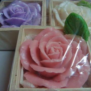 Rosa  de Marrocos