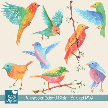Clipart Pássaros Coloridos - Aquarela