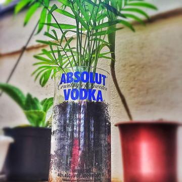 Vaso de garrafa Absolut Vodka