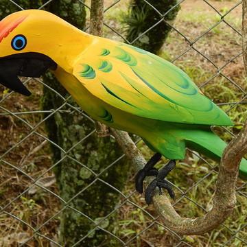 Passaro no galho papagaio verde amarelo