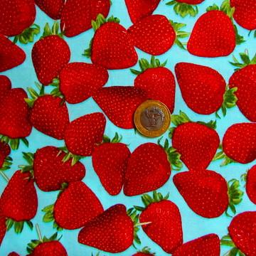 Tecido de frutas