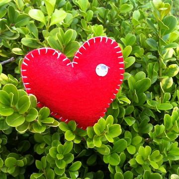 Coração de feltro - vermelho com detalhe